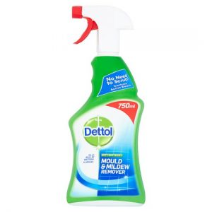 Dettol Antibacterial Mould and Mildew Remover Spray 750ml