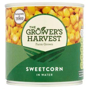 Growers Harvest Sweetcorn In Salt Water 325g